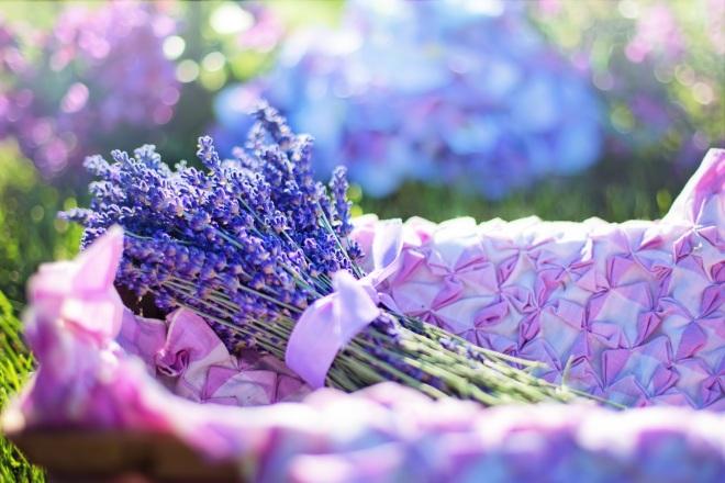 pexels-photo-lavender